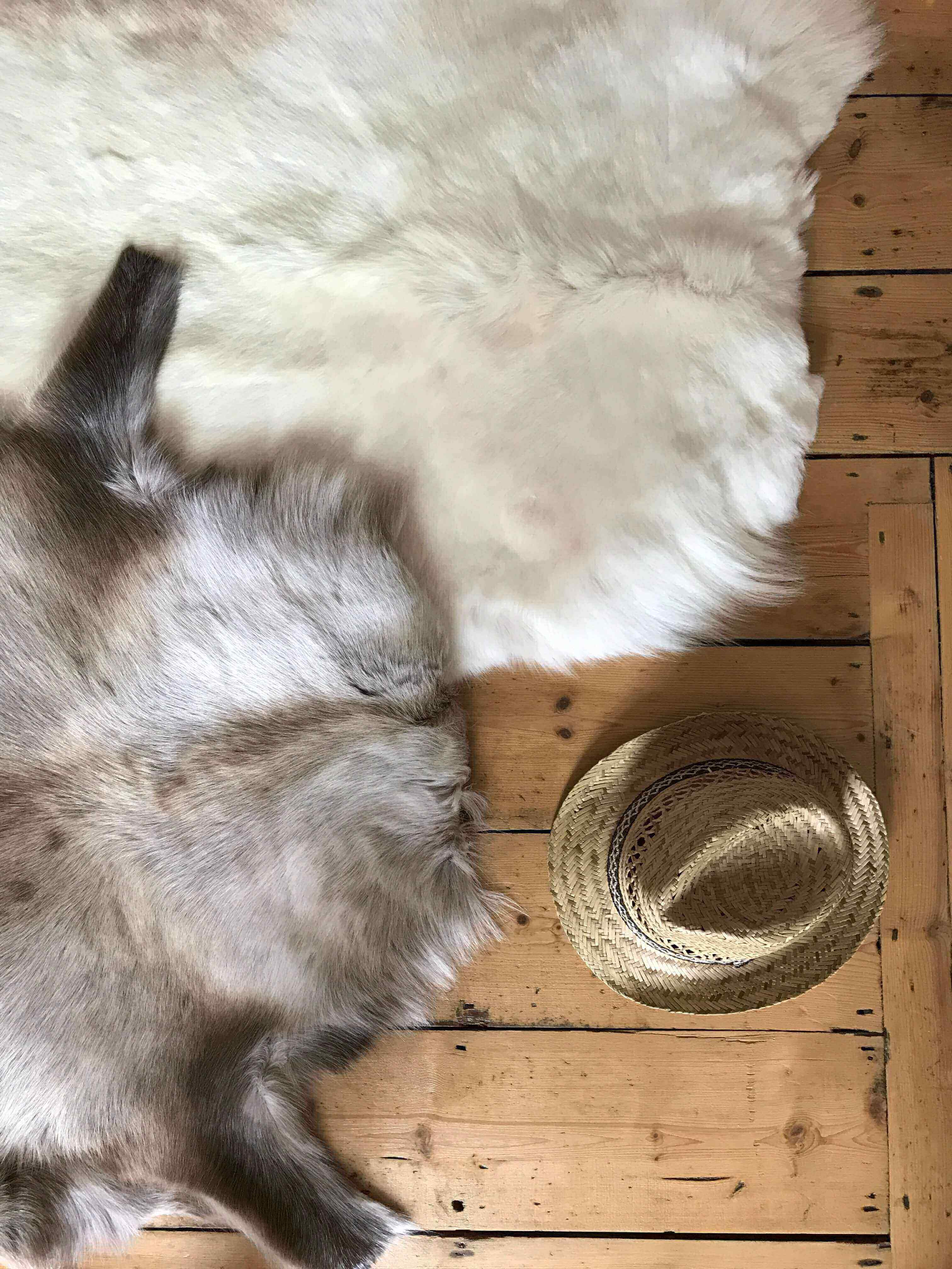 Nordic Hide Reindeer Collection (Two Hides)